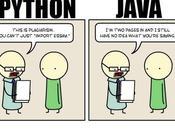 Cual lenguaje programacion facil aprender Java Python