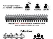 Infografía: todo saber sobre ébola