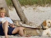 """#NBC creará serie secuela """"Marley"""