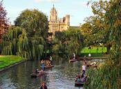 Cambridge puentes