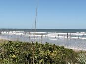 Ruta Canaveral National Seashore Smyrna Beach Maytown Osteen