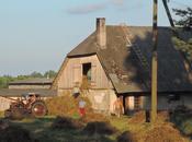 Viaje ninguna parte. Letonia off-road