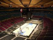 York City Basket, basket basket!