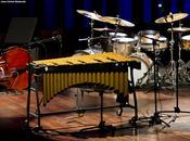 FOTO: GARY BURTON QUARTET: Fotos concierto L´AUDITORI (Barcelona)-46 FESTIVAL INTERNACIONAL JAZZ BARCELONA