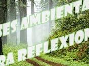 Frases ambientales reflexión para despedir 2014 empezar 2015