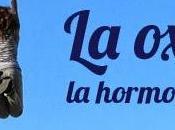 hormona amor curiosidades Pilar Jericó