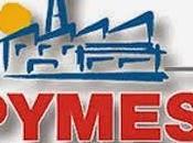 Pymes confían esfuerzo propio