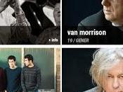 Suite Festival Bcn: Woody Allen, Morrison, Geldof, Casal, Gregory Porter, Antonio Orozco...