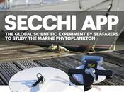 Secchi App: proyecto para estudiar fitoplancton marino