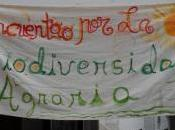 mercadeo Extremadura