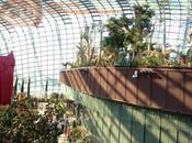 Botánico Singapur Gardens Bay. Parte