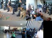 Chubut: Legislatura ninguneó iniciativa popular contra megaminería