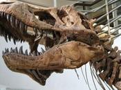 ¿Pudieron dinosaurios existir hace 10.000 años?