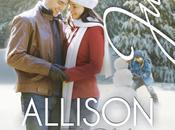 Vidas robadas Allison Leigh