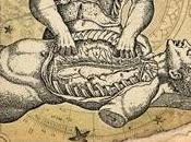 Anatomía postmemoria-Suburbano