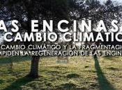 Encinas Cambio Climático