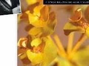 Susana Fuentes publica Flores amarillas otros relatos amor muerte