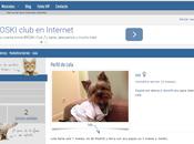 social para mascotas