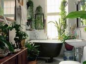 Plantas para decorar baño