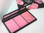 Paletas faciales: Blush (Pink Lemonade) Sleek