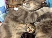 todos juntitos...el abrazo mamimedicina?...hummm ri...