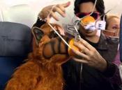mejores vídeos seguridad aerolíneas