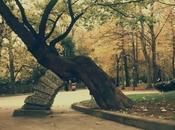 Invierno Oviedo. Digital, edición VSCO. Parque San...