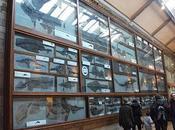 Misterio Museo