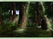 bosque Tolkien