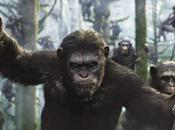 Cinecritica: Planeta Simios: Confrontacion