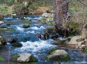 Valle Fuenfría, ruta Miradores. Naturaleza montaña afueras Madrid