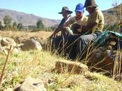 Extension rural para manejo sostenible recursos naturales