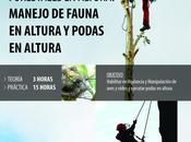 REDFORESTA escrito nueva entrada, CURSO PRESENCIAL: TRABAJOS FORESTALES ALTURA: MANEJO FAUNA ALTURA PODAS HORAS)-MADRID, sitio
