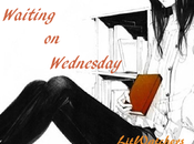 Waiting Wednesday #35: Kass Morgan