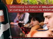 Concurso Vinya Celler Masia. Concurs Masia