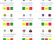 Pronosticos jornada futbol mexicano clausura 2015