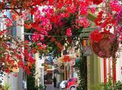 Bellas calles techadas flores árboles.