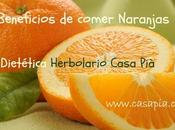 ¿Conoces beneficios comer naranjas?