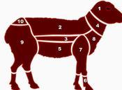 Tema Materias primas. Carnes: Ganado ovino