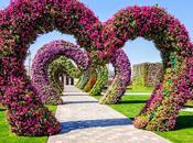 Miracle Garden (Dubai)