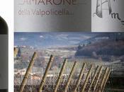 Vino mes: Zyme 2006 Amarone della Valpolicella