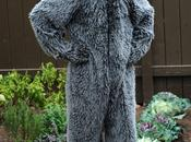 Dioses seriéfilos: Wilfred