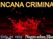 Yincana criminal- tres meses crímenes