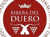 descubrimiento mejores vinos Ribera Duero