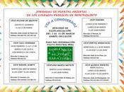 Jornada puertas abiertas colegios públicos Montequinto
