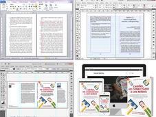 Editar publicar sinónimos