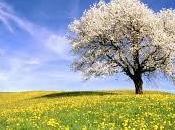 Suddenly, it`s spring. repente primavera)