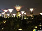 recomendaciones para disfrutar Singapur