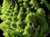 Imágenes fractales naturaleza