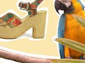 Dorita quiere ciempiés para calzar nueva colección Sarahworld